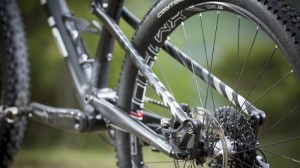 Mountain Bike for Your Money