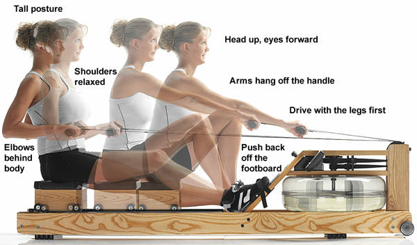 Rowing Machine Positions